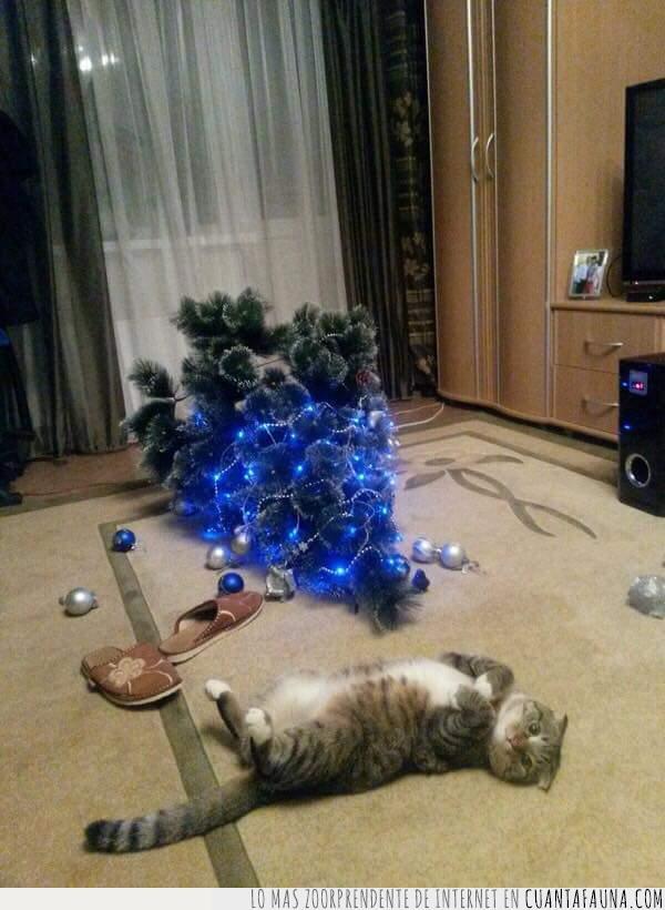 arbol de navidad,gatos,navidad,tirar,travieso,tumbado