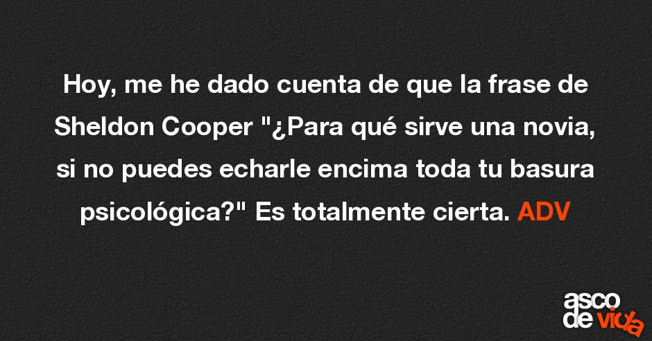 Hoy Me He Dado Cuenta De Que La Frase De Sheldon Cooper