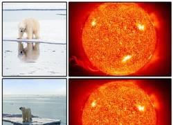 Enlace a Lo que hace el calentamiento
