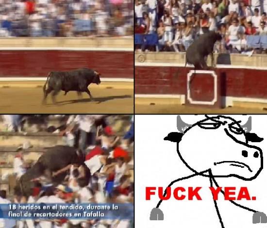 Fuck_yea - Toro Fuck Yeah