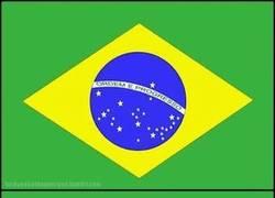 Enlace a Forever brazil