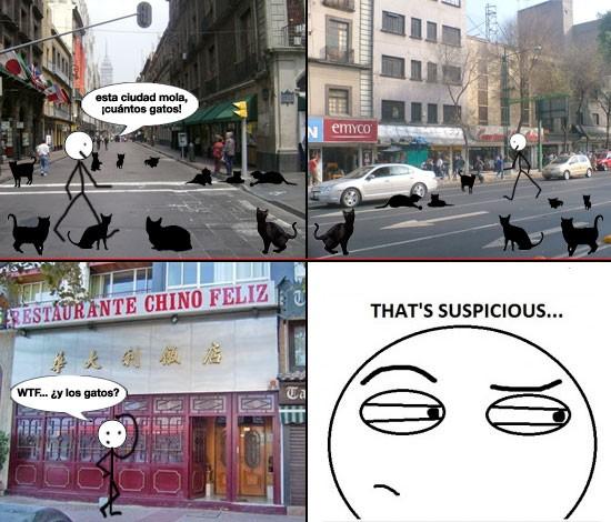 Thats_suspicious - ¿Leyenda urbana?
