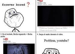 Enlace a Comprueba el youtubesnake