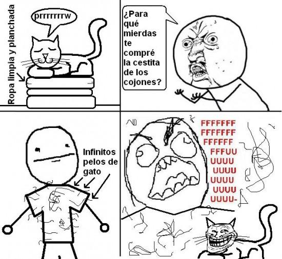 Ffffuuuuuuuuuu - Siempre los gatos