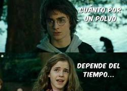 Enlace a Hermione Poker Face