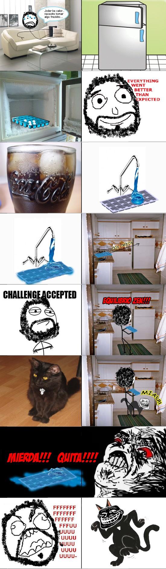 Challenge Accepted,cubitera,FFUU,gato,hielo,troll