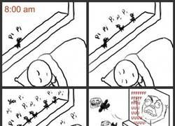 Enlace a Despertador sin pilas