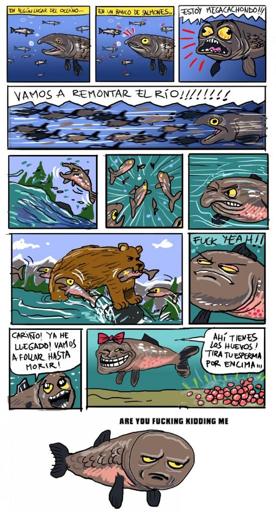 huevos,salmón