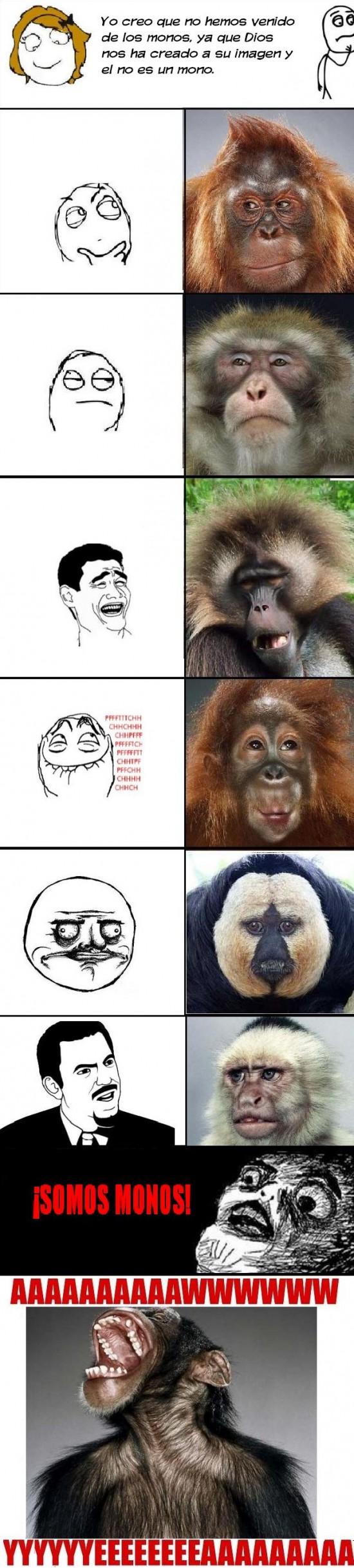 Aww_yea - La evolución