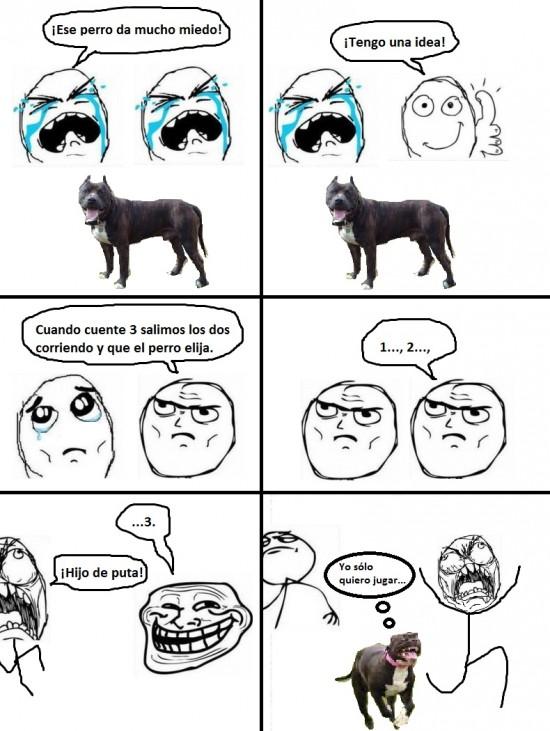 Fuck_yea - Perro incomprendido