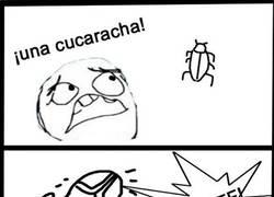 Enlace a Cucarachas inmortales