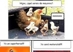 Enlace a El futuro de los pollos