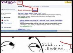 Enlace a Yahoo... infinito desprecio