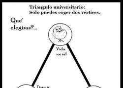 Enlace a Triángulo universitario