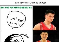 Enlace a Yao Ming en forma de meme