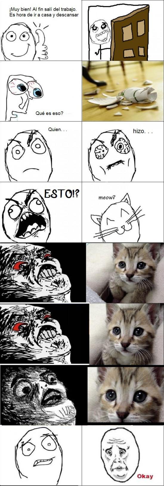 gato,inglip,okay