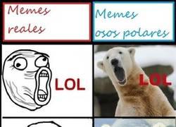 Enlace a Memes Polares