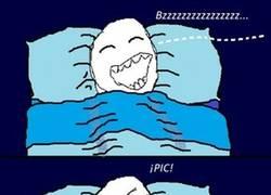 Enlace a Mosquitos nocturnos