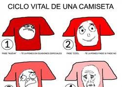 Enlace a La evolución de las camisetas