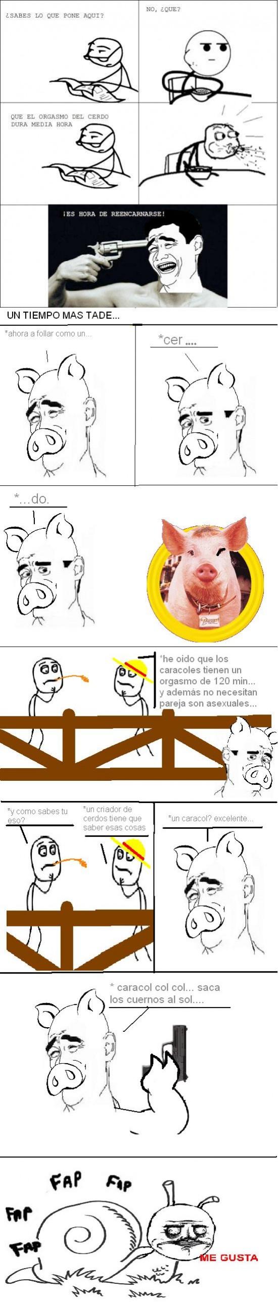 Yao - ¿Más orgasmos que un cerdo?