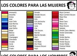 Enlace a Los colores