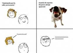 Enlace a Dog Whisperer