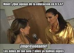 Enlace a Educación ... ¿bilingüe?