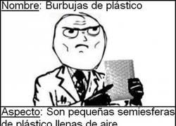 Enlace a Burbujas de plástico