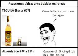 Enlace a Bebidas extremas