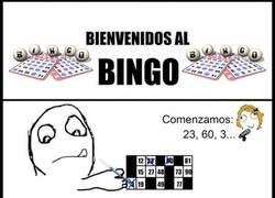 Enlace a Jugando al bingo