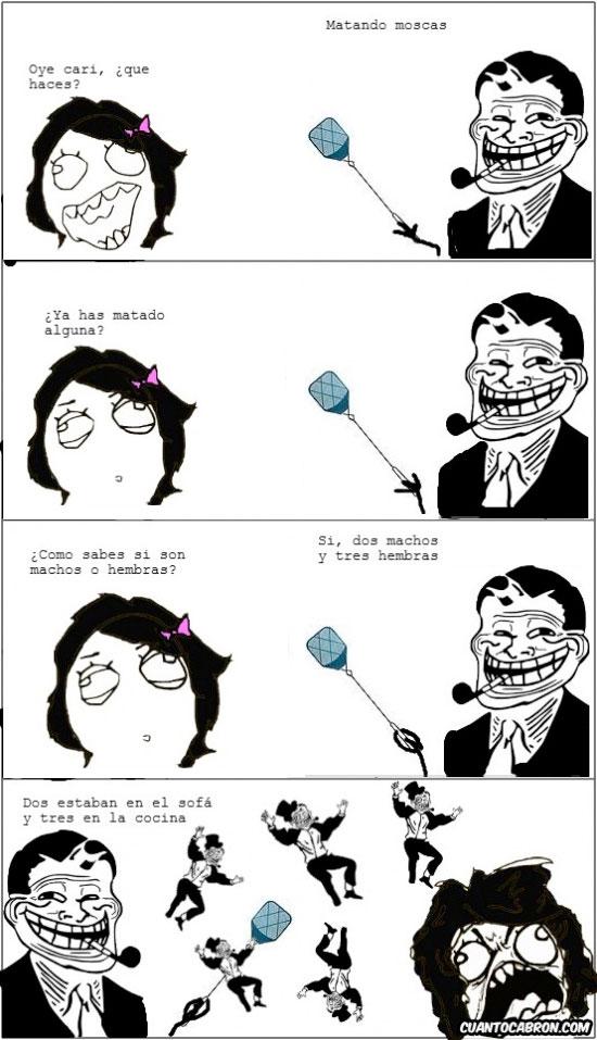 Trolldad - Las moscas