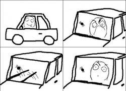 Enlace a Una araña en el coche
