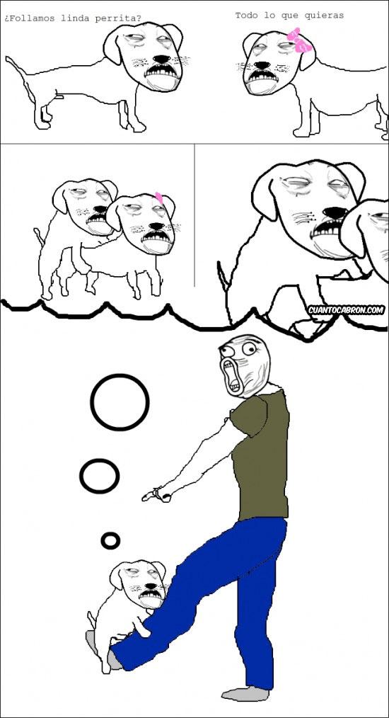 Lol - Hot dog