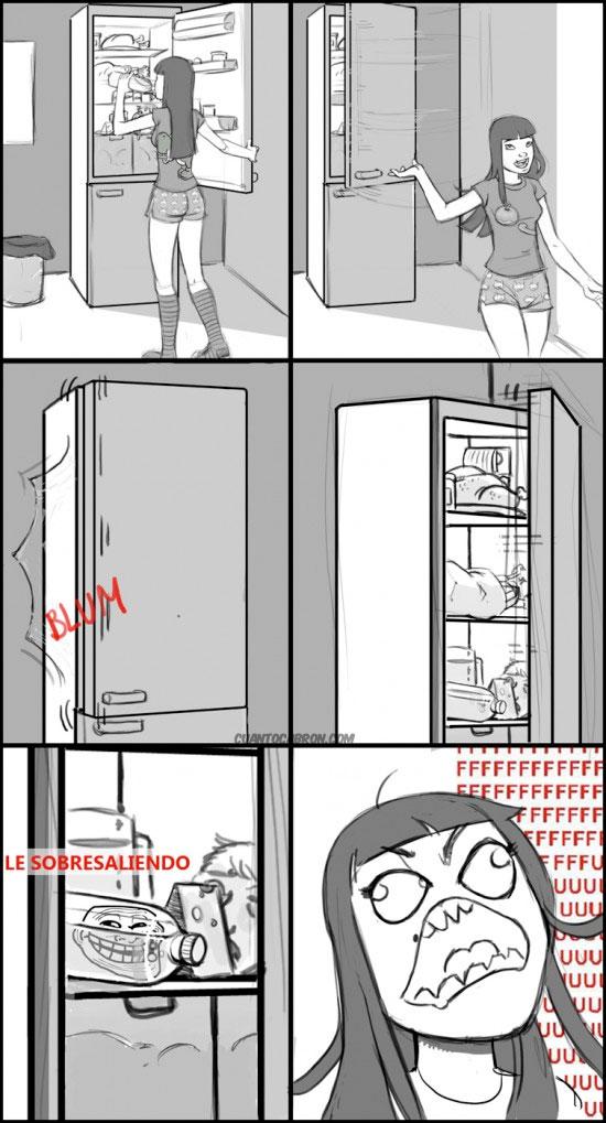 botella,fffuuu,frigorífico,nevera,puerta,trollface