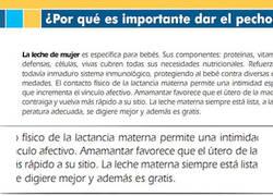 Enlace a Lactancia Materna