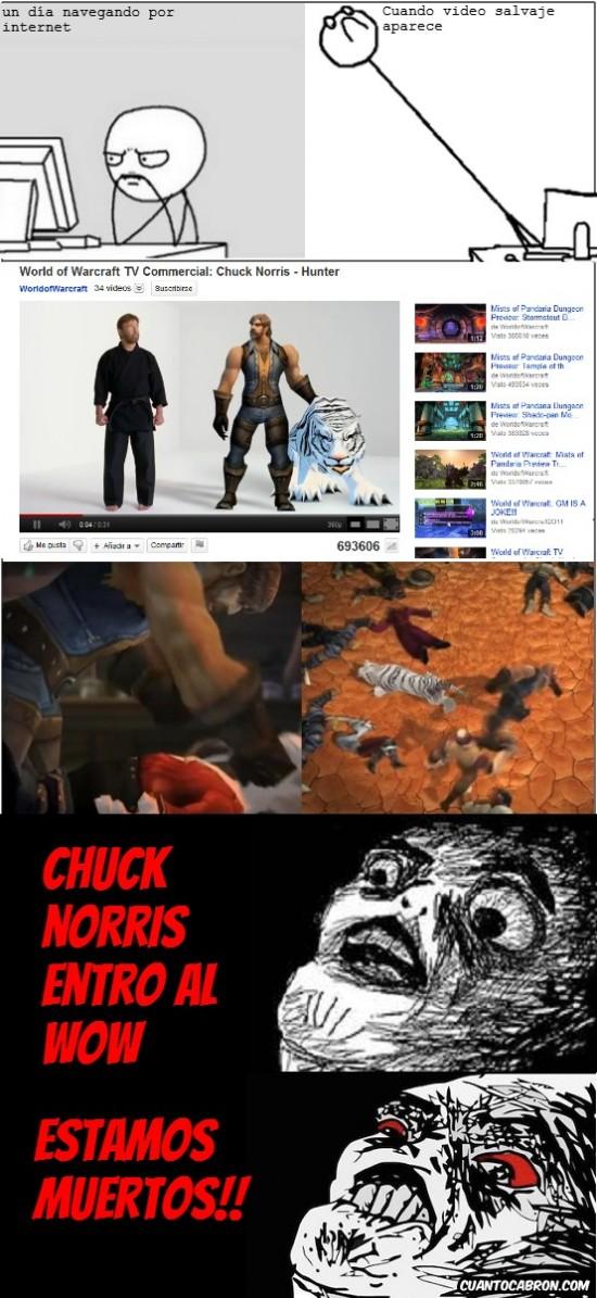 chuck norris,juegos,rainsins,wow