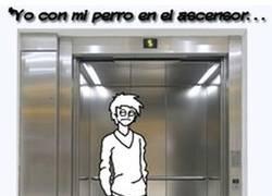 Enlace a Perro en el ascensor