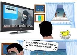 Enlace a Mientras tanto en Canarias