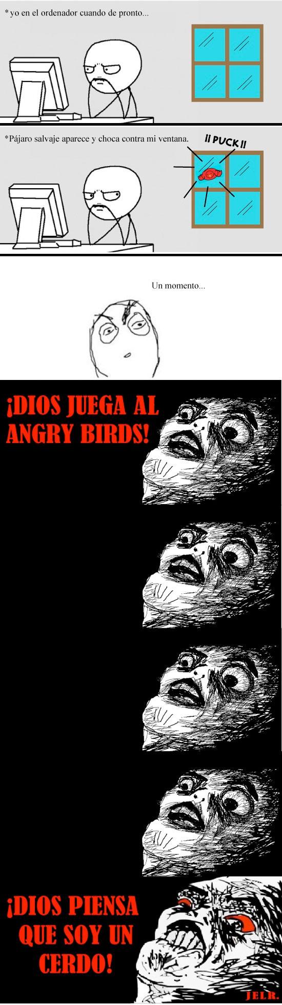 angry,birds,cerdo,dios,divierte,guy,inglip,pc,raisins