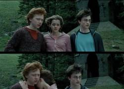 Enlace a Harry, ¡búscate la vida!