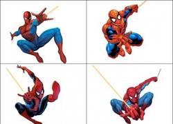 Enlace a Spiderman, cerdo