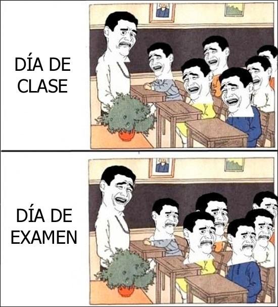 clases,examen,yao ming