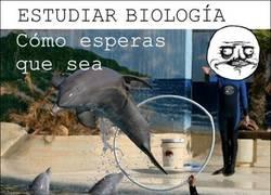 Enlace a La verdad sobre la Biología