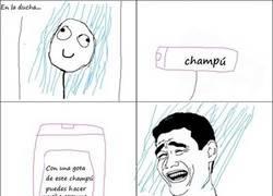 Enlace a Champú