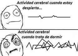 Enlace a Mi actividad cerebral