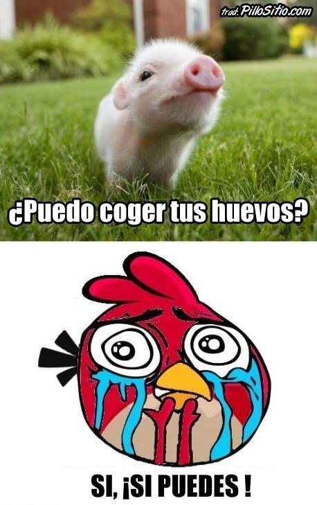 Otros - Hasta los Angry Birds tienen su lado sensible
