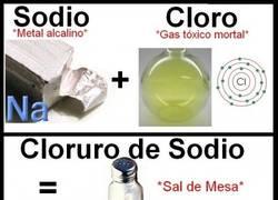 Enlace a Sal