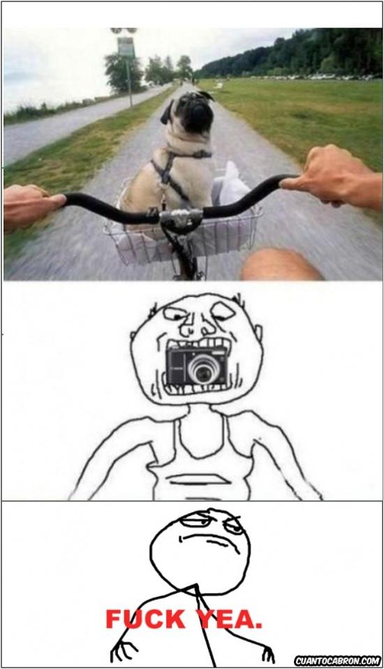 bicicleta,boca,camera,fuck yeah,perro
