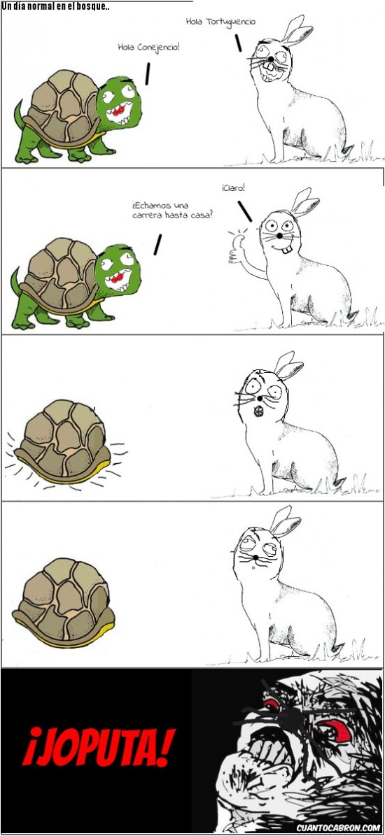 joputa,Tortuga