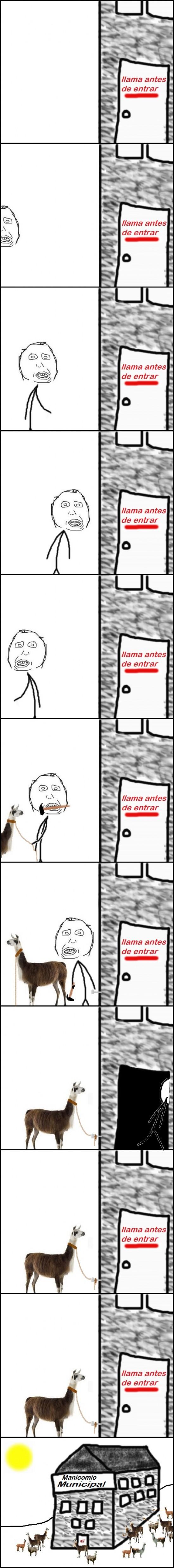entrar,Llama,loco,manicomio,retarded